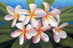 Brian Marshall White - Rainbow Plumeria