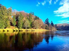 Dunkeld House Fishings: Dunkeld House Beat River Tay