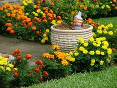 Tipos-de-plantas-para-jardim-externo