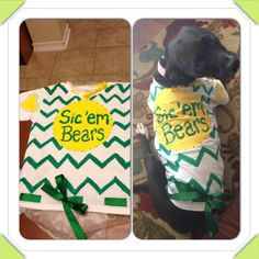 Shirt I painted for my precious dog! She is ready for some porch time during the next #Baylor game!! @Baylor Proud