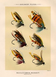 salmon flies glorious fly fishing print no. 1 by EPHEMERApress