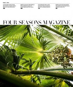 Fresh Ideas | towering loulu palm (Pritchardia sp.), shot by Los Angeles–based photographer Dave Lauridsen at Lyon Arboretum, in O'ahu's Mānoa Valley, is one of 5,000 tropical plant taxa maintained there. - See more at: http://magazine.fourseasons.com/magazine-issue/2014-issue-1#sthash.nrZ3J9YE.dpuf