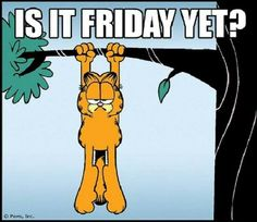 The Garfield Trail Garfield Quotes, Garfield Cartoon, Garfield And Odie, Wednesday Humor, Monday Humor, Viernes Friday, Jim Davis, Work Motivation, Daily Funny