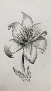 - Cuaderno de tareas, dibujos a lápiz Easy Pencil Drawings, Nature Sketches Pencil, Pencil Drawings Of Flowers, Pencil Shading, Cool Art Drawings, Art Drawings Sketches, Drawing Art, Drawing With Pencil, Shading Drawing