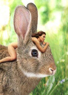 La théorie du tout Kangaroo, Rabbit, Fantasy, Animals, Wonderland, You Are Awesome, Spirituality, Good Morning, Rabbits
