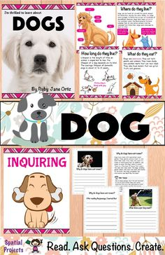 Check out this All About Dogs nonfiction unit for your 1st, 2nd, or 3rd grade students. You will get a book with text features, worksheets, lap book assembly guide, and craft pattern. Also included is a booklet which contains graphic organizers and writing activities. The activities include identifying the main idea and supporting details, note-taking, filling up a K-W-L chart, opinion writing, expository writing, story writing, tracing, drawing, and coloring. Fun Lesson on Pet Animals!