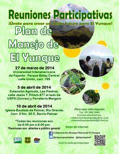 Participa en las reuniones para el Plan del Manejo de El Yunque.