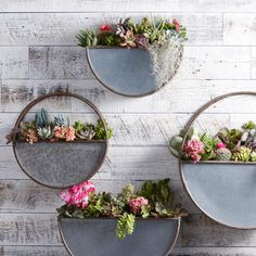 Small Oval Galvanized Metal Wall Planter by World Market 2019 Metal Planters The post Small Oval Galvanized Metal Wall Planter by World Market 2019 appeared first on Metal Diy. Patio Wall Decor, Outdoor Wall Decorations, Half Wall Decor, Outside Wall Decor, Metal Wall Planters, Outdoor Wall Planters, Outdoor Metal Wall Decor, Rustic Planters, Budget Patio