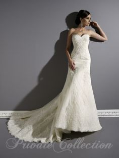Private Collection 18824 in Dark Ivory, Size 10