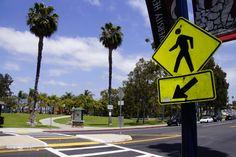 Crossing Adams Avenue to Trolley Barn Park in University Heights, San Diego