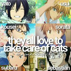 yato, usui, sorata, sebastian, subaru, kousei / facts/ anime/ cats