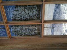 Promenade en ski un jour frisquet. Skiing, Windows, Frame, Home Decor, D Day, Ski, Homemade Home Decor, Window, Interior Design