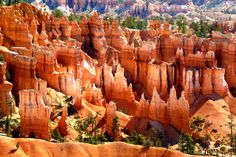 Located in the south of Utah, Bryce Canyon National Park is renowned for its geological formations made of orange rocks in conical shapes with the oldest more than 10 million years old. © Bruno Ticket