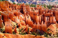 Bryce Canyon aux USA , un des plus beaux sites ...