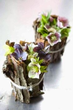 Windmill Farm: Trends of Flower Arrangements-Going More Natural Love Flowers, My Flower, Spring Flowers, Flower Art, Beautiful Flowers, Winter Flowers, Rustic Flowers, Ikebana, Deco Floral