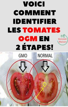 Voici comment identifier les tomates OGM en 2 étapes! Attention, Voici, Projects To Try, Money Saving Tips, Fruits And Vegetables, Tomatoes, Saving Money, Being Healthy