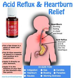 Young Living Di-Gize Essential Oil Acid Reflux Heartburn Relief. by Julie Cavalier