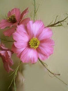 Sugar cosmos  DEBBIE BUNSIC tutorials are best for flowers