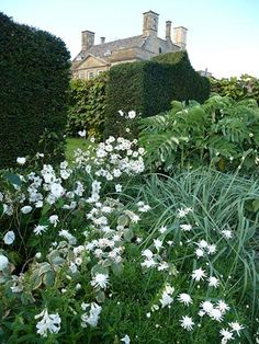 .ψ.Ψψψ.. Bourton House Garden