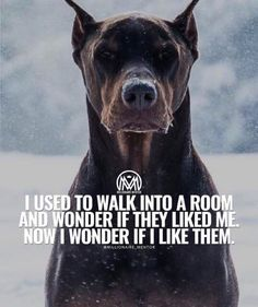 I used to walk into a room and wonder if they will like me. Now I wonder if I will like them.