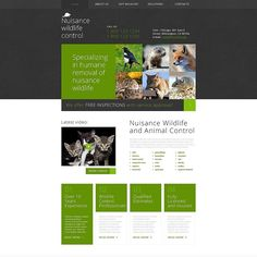 Follow-me on Twitter   Pest Control Responsive Website Template CLICK HERE!  http://cattemplate.com/template/?go=2qYTHP8  #templates #graphicoftheday #websitedesign #websitedesigner #webdevelopment #responsive #graphicdesign #graphics #websites #materialdesign #template #cattemplate #shoptemplates