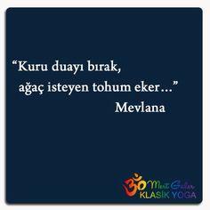 """Kuru duayı bırak, ağaç isteyen tohum eker..."" Mevlana Wisdom Quotes, Book Quotes, Tumblr, Earth News, Allah Quotes, Catechism, More Than Words, Sufi, Cool Words"