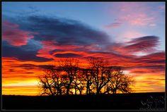 Gorgeous Orange & Blue Sunrise in Fort Collins, CO