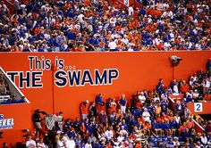 5 Great Workouts You Can Do in the Swamp Check out the Her Campus UF article at: http://www.hercampus.com/school/ufl/5-great-workouts-you-can-do-swamp