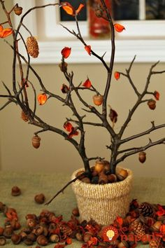 65 Easy Thanksgiving Centerpieces That'll Wow Your Guests - 65 Easy Thanksgiving Centerpieces That'll Wow Your Guests 56 Fall and Thanksgiving Centerpieces – DIY Ideas for Fall Table Decorations Diy Thanksgiving Centerpieces, Fall Table Centerpieces, Centerpiece Ideas, Fall Table Decorations, Table Color, Tree Branch Centerpieces, Thanksgiving Tree, Fall Diy, Fall Crafts