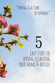 Easy Cleaning Tips from Nosh and Nurture