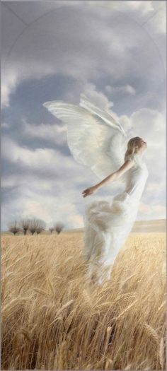 Angel taking flight