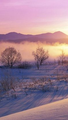 Winter, Mist, Snow, Landscape, Mountain, Tree, Sunrise http://alcoholicshare.org/