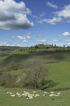 Pace e serenità di una valle che fu, in epoca remota, dimora per gli Etruschi - Valdichiana, Tuscany, Italy