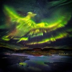 The mesmerising images of the aurora borealis show the mythical creature rising from the ground.