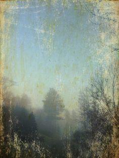 Seth Apter | Fog 1| photograph and encaustic.