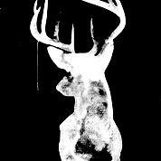 Oh-Deer_black - Urban Road canvas wall art Black Canvas Art, Canvas Art Prints, Canvas Wall Art, Canvas Paintings, Painting Art, Colorful Centerpieces, Urban Road, Thing 1, Oh Deer
