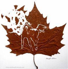 Freedom - Actual Leaf