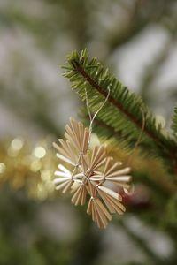 Swedish Christmas Crafts - Straw Star Ornament
