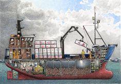 Chris Craft Wooden Boats, Boat Illustration, Boat Drawing, Free Boat Plans, Shrimp Boat, Build Your Own Boat, Wooden Boat Plans, Boat Building Plans, Boat Art