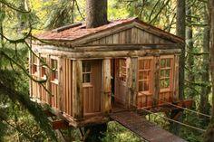 Tree House Hotel .... New Zealand