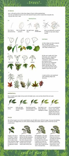 tree tutorial part 3 by ~calisto-lynn on deviantART