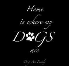 Home is where my dogs are!