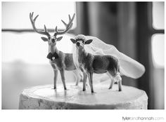 Deer and Stag Wedding Cake Topper // Rustic Woods Wedding // tylerandhannah.com #rusticwedding #weddingcake