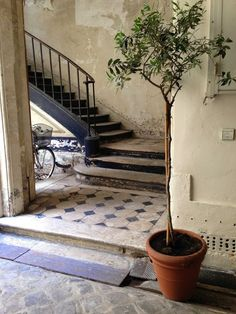 interior.OLD  French interior, tiled floor, classical staircase, old classical, rustic