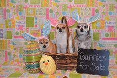 Easter 2015 <3 <3 <3