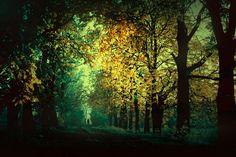 ... by BaxiaArt.deviantart.com on @DeviantArt