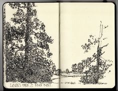 A visual blog recording daily fine liner drawings.