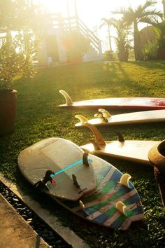 Boards are wet because: 1. It's morning and there is morning dew on them and you don't know which one to pick for the morning session  2. because its evening and you picked them all.  #surfing #surfboards #sun | re-pinned by  http://www.wfpcc.com/palmbeachrealestate.php