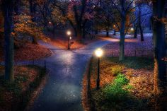 New York in the fall....<3