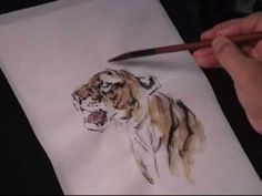 Watch this instructional painting video to draw a roaring tiger with india ink and water color on chinese rice paper. this fluid style of painting takes lot Tiger Painting, One Stroke Painting, Painting Tattoo, Painting Videos, Ink Painting, Painting Techniques, Watercolor Paintings, Learn Painting, Watercolours